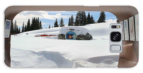 Snow Daze Galaxy Case by Fiona Kennard
