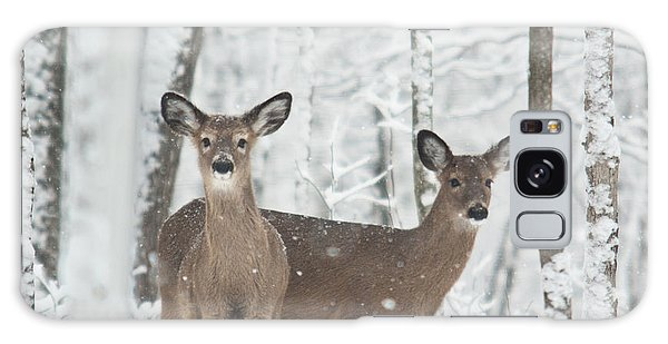 Crossville Galaxy Case - Snow Deer by Douglas Barnett