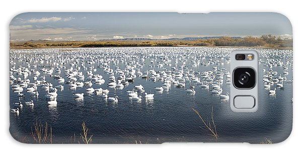 Snow Geese - Bosque Del Apache Galaxy Case