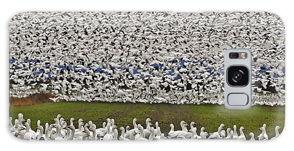 Snow Geese By The Thousands Galaxy Case by Valerie Garner