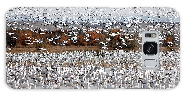 Snow Geese No.4 Galaxy Case