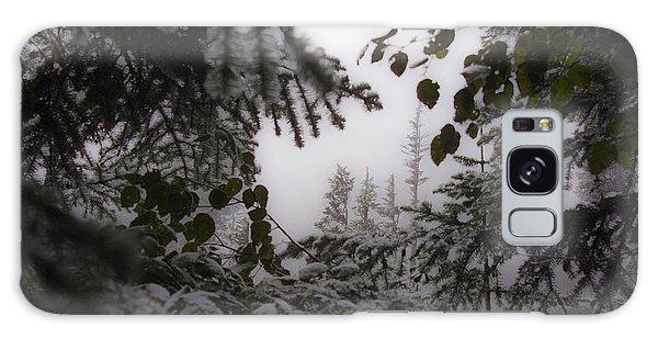 Snow In Trees At Narada Falls Galaxy Case