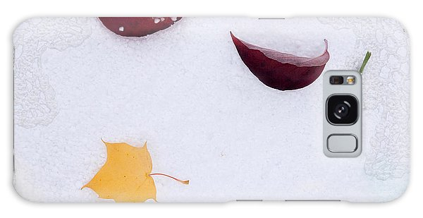 Snow Kissed Galaxy Case