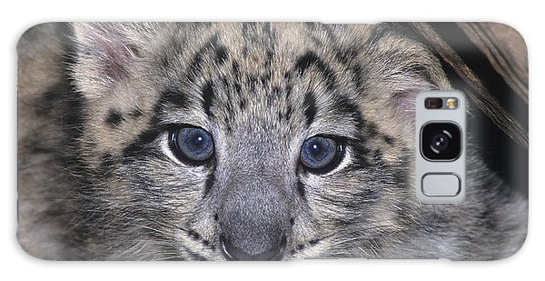 Snow Leopard Cub Endangered Galaxy Case