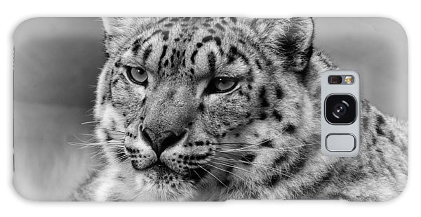 Snow Leopard Portrait Galaxy Case