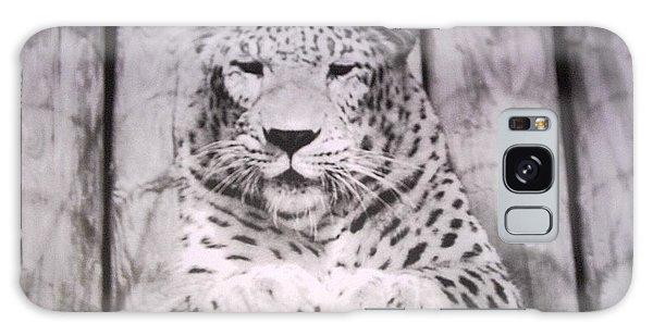 White Snow Leopard Chillin Galaxy Case by Belinda Lee