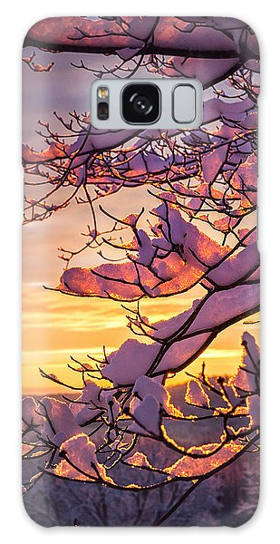 Snow On Branches Galaxy Case