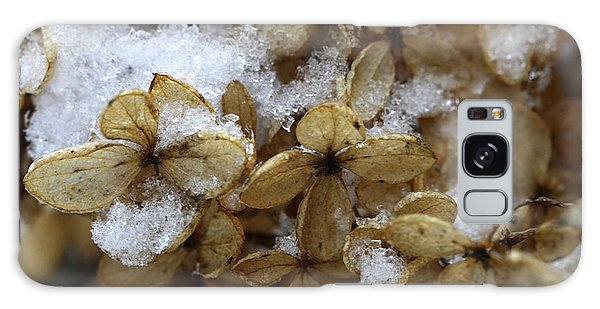 Snow On Hydrangea Galaxy Case
