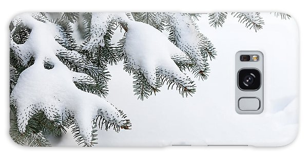 Pine Branch Galaxy Case - Snow On Winter Branches by Elena Elisseeva