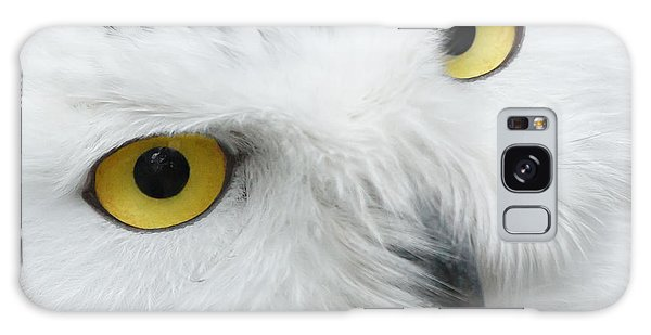 Snow Owl Eyes Galaxy Case