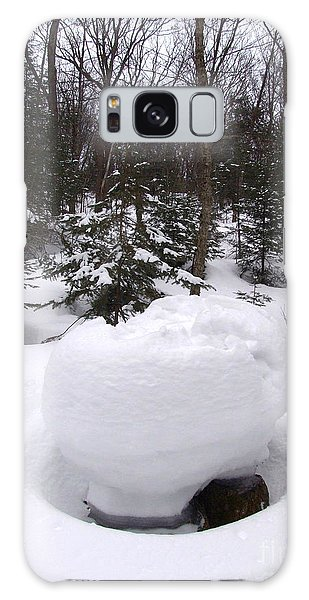 Snow Sculpture - Algonquin - Canada Galaxy Case by Phil Banks