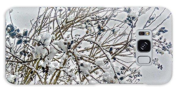 Snowcovered Bush Galaxy Case