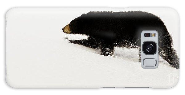 Snowy Bear Galaxy Case