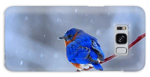 Snowy Bluebird Galaxy Case by Nava Thompson