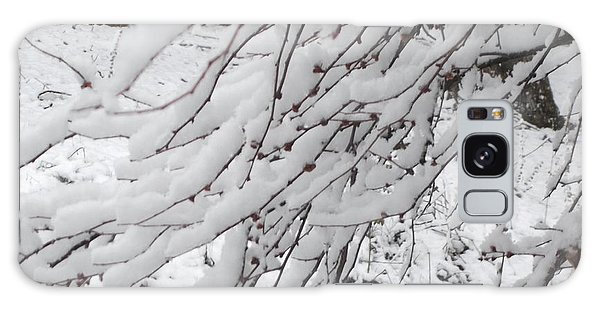 Snowy Branches Galaxy Case by Donna Dixon