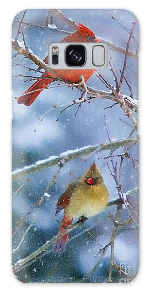 Snowy Cardinal Pair Galaxy Case