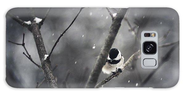 Snowy Chickadee Galaxy Case