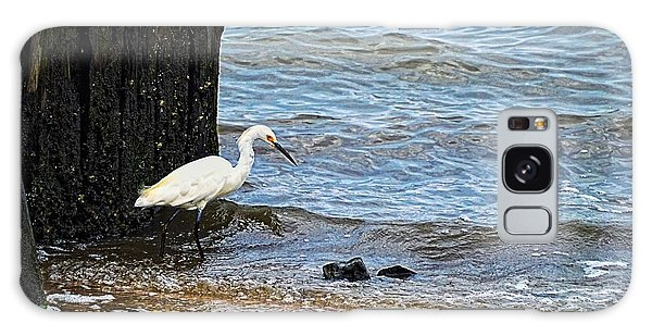 Snowy Egret At The Shore Galaxy Case