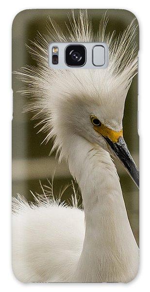 Snowy Egret Display Galaxy Case