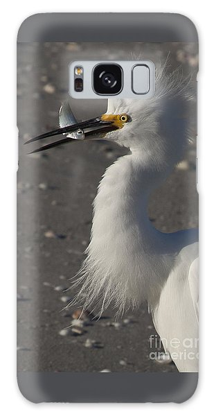 Snowy Egret Fishing Galaxy Case by Meg Rousher