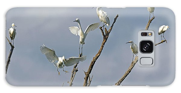 Snowy Egret Inn Galaxy Case