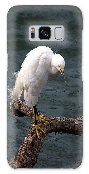 Snowy Egret Out On A Limb Galaxy Case