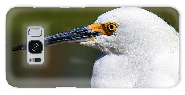 Snowy Egret Portrait Galaxy Case