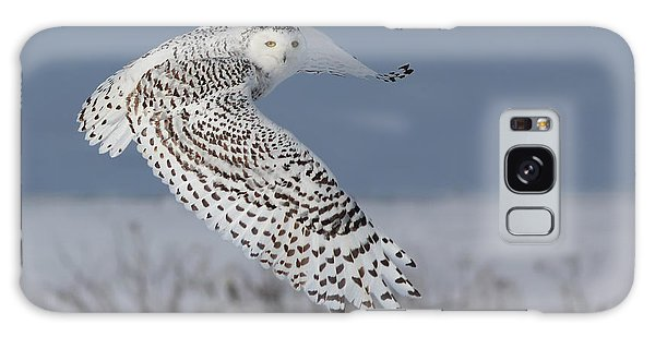 Snowy In Action Galaxy Case by Mircea Costina Photography