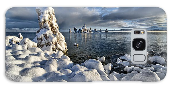 Snowy Mono Lake Galaxy Case