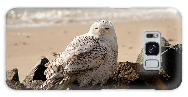 Snowy Owl At Forsythe Galaxy Case
