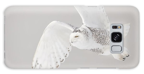 Snowy Owl In Flight 4 Galaxy Case
