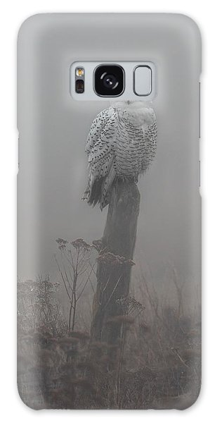 Snowy Owl  In The Mist Galaxy Case