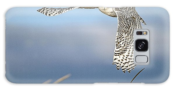 Snowy Owl Over The Dunes Galaxy Case