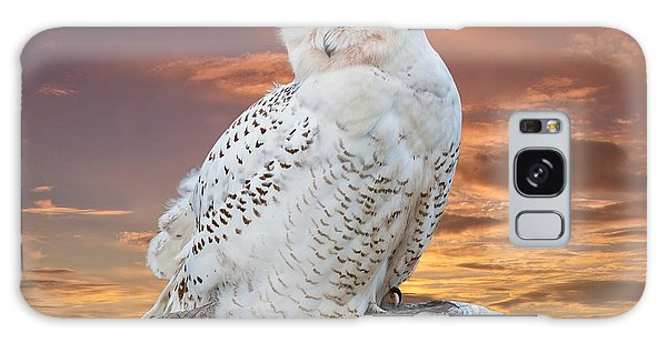 Snowy Owl Perched At Sunset Galaxy Case