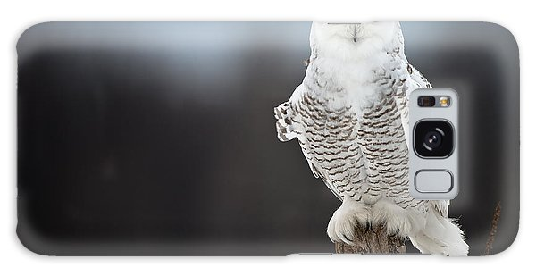 Snowy Owl Pictures 13 Galaxy Case