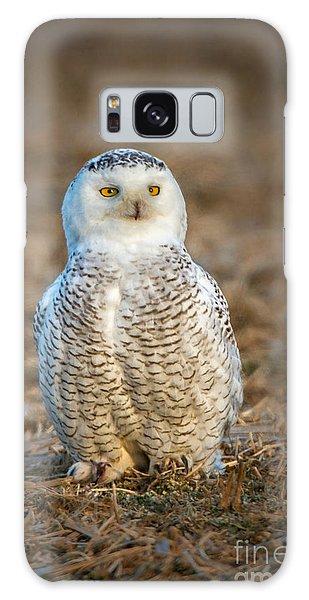 Snowy Owl Galaxy Case