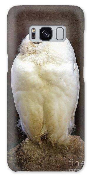 Mottled Galaxy Case - Snowy Owl Vintage  by Jane Rix