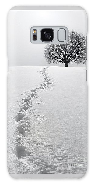Snowy Path Galaxy Case
