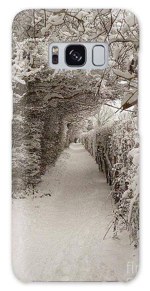 Snowy Path Galaxy Case by Vicki Spindler