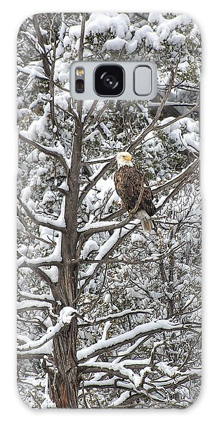 Galaxy Case featuring the photograph Snowy Perch Bald Eagle by Britt Runyon