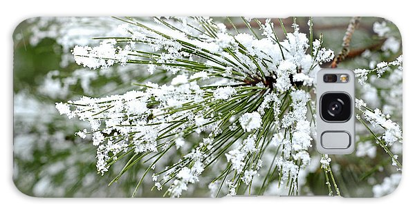 Pine Branch Galaxy Case - Snowy Pine Needles by Elena Elisseeva