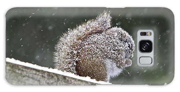 Snowy Squirrel Galaxy Case