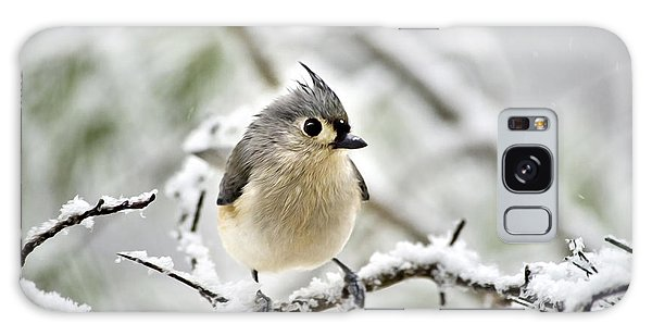 Snowy Tufted Titmouse Galaxy Case by Christina Rollo
