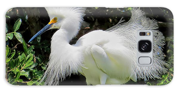 Snowy White Egret Breeding Plumage Galaxy Case