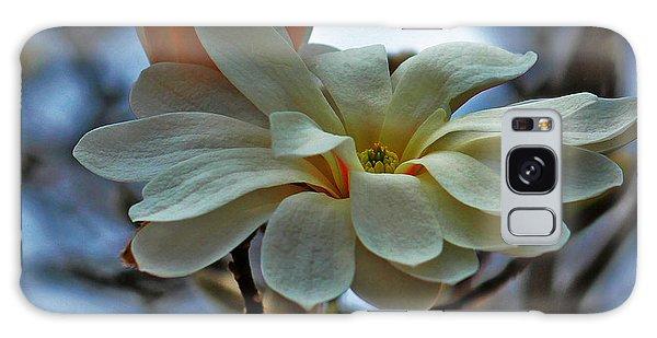 Soft Blooms Galaxy Case by Rowana Ray