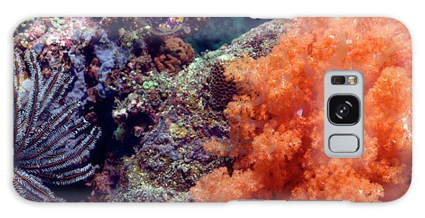 Feather Stars Galaxy Case - Soft Corals And Feather Stars by Peter Scoones/science Photo Library