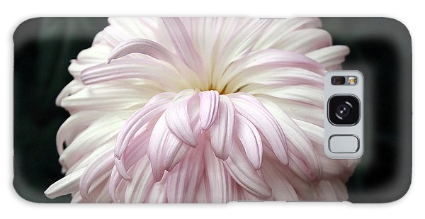 Soft Lavendar Mum Galaxy Case by Mary Haber