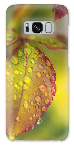 Soft Morning Rain Galaxy Case
