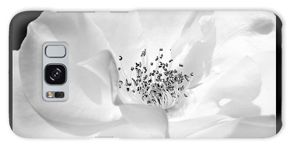 Soft Petal Rose In Black And White Galaxy Case