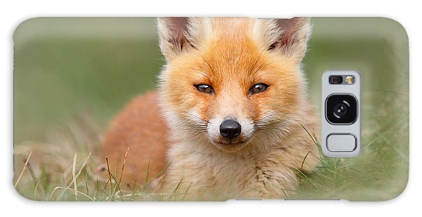 Hiding Galaxy Case - Softfox -young Fox Kit Lying In The Grass by Roeselien Raimond